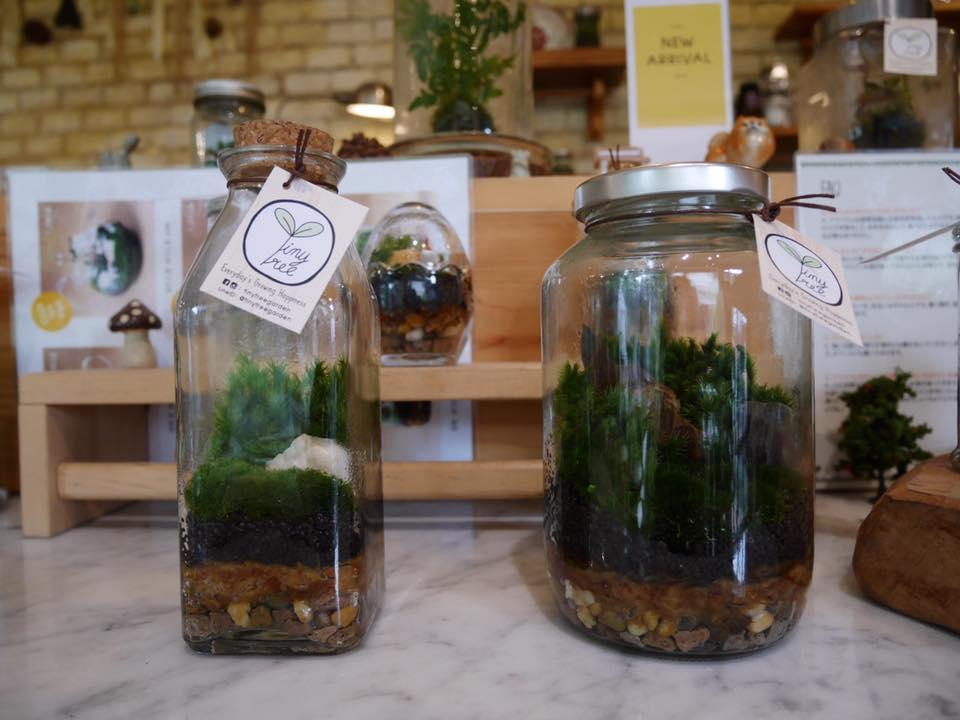 Tiny Tree Cafe