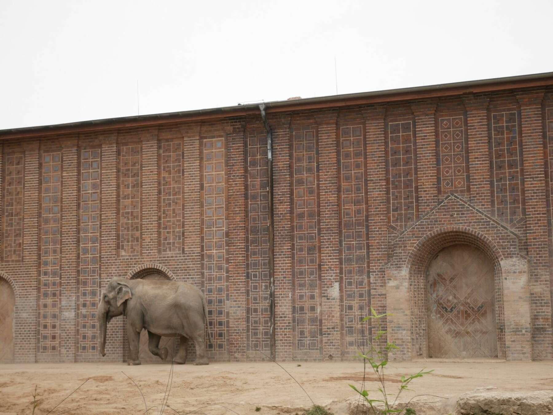 สวนสัตว์ไลพ์ซิช (Zoo Leipzig)