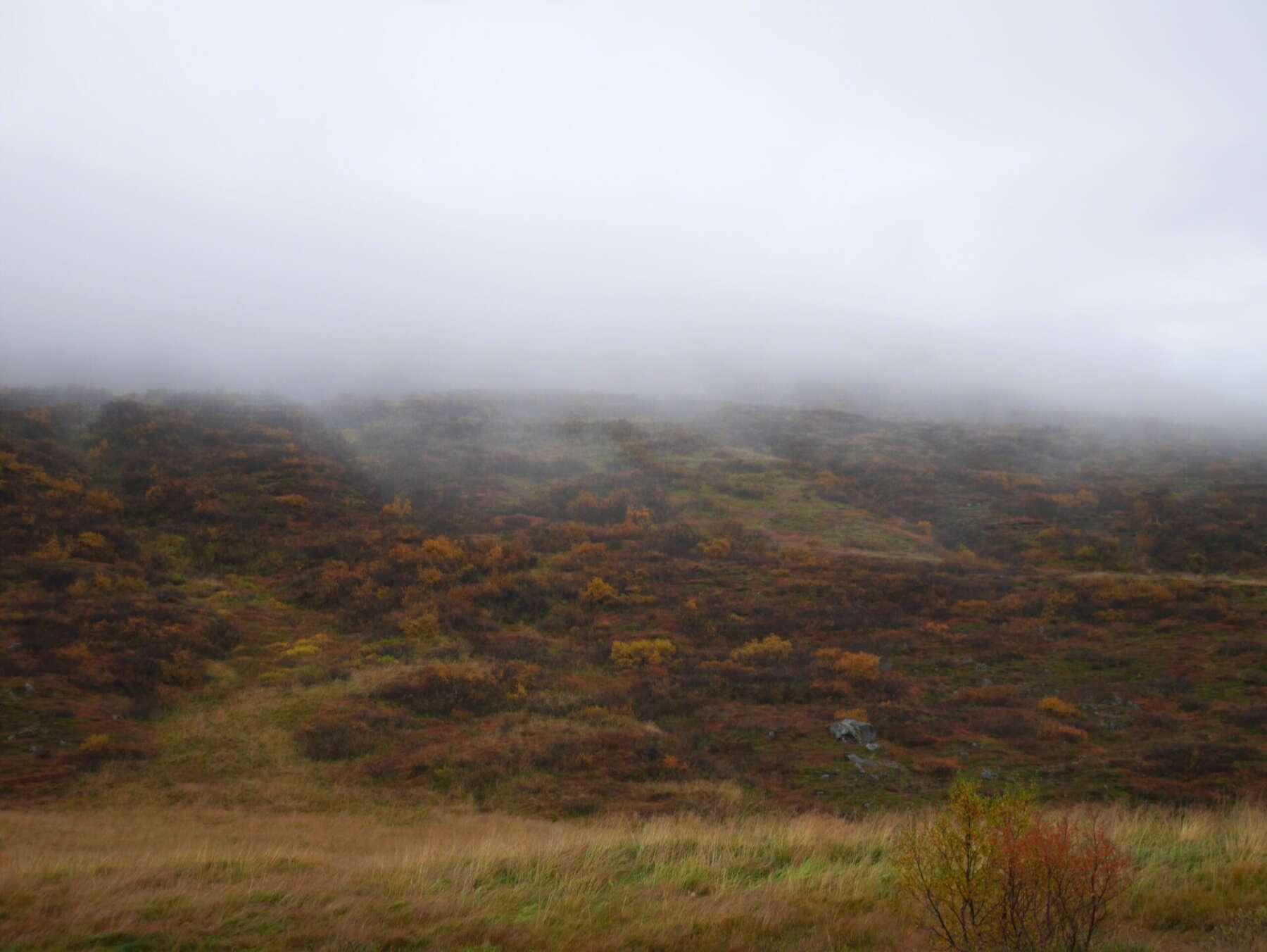 เที่ยวไอซ์แลนด์ด้วยตัวเอง